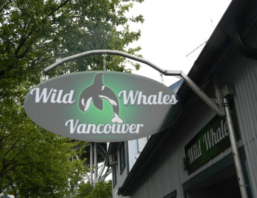 The Wonders of Whale Watching: Vancouver